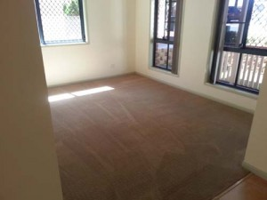 Ipswich carpet cleaning
